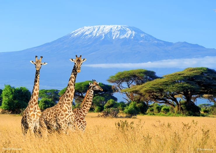 Places in Africa that all travelers should visit