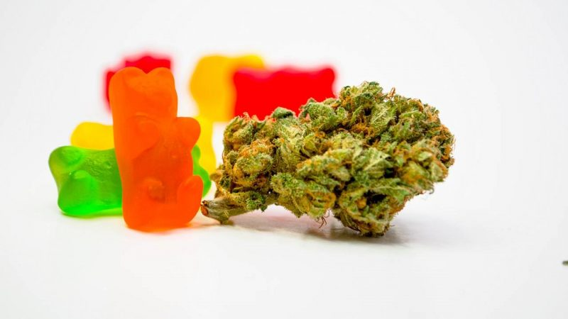 What Are the Benefits CBD Gummies for Kids?